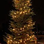 Julegrantenning med juleverksted og kafe på Grendahuset, i dag kl Toget starter fra butikken…